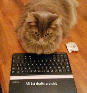typewriter cat